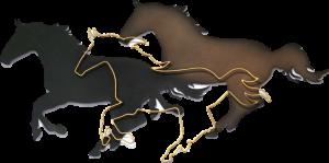 mustanghorse